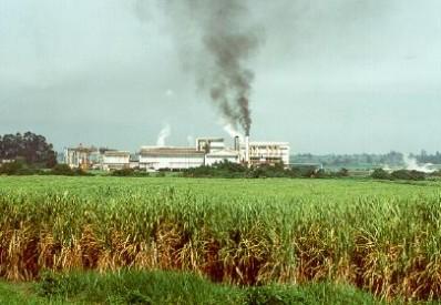 Kenya - Mumias Sugar Company Limited (1)